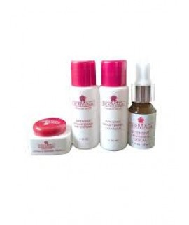 Travel Kit A (Normal to Oily Skin)
